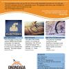 OCC Fall Newsletter